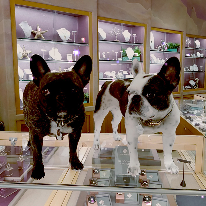 These Ridiculously Cute Store Greeters Break the Ice and Calm Shoppers' Nerves