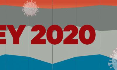 The Big Survey 2020: Who Took This Survey