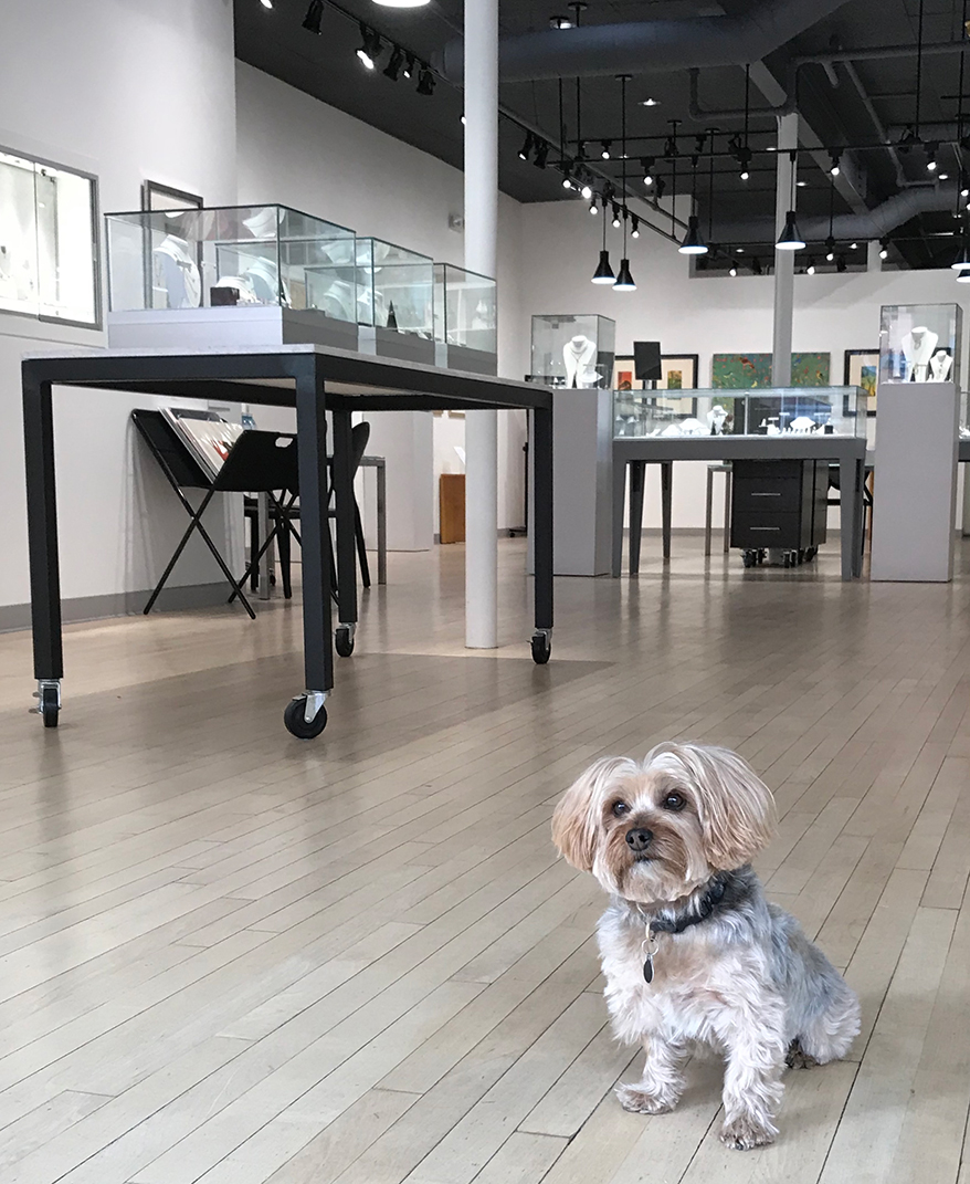 Colorado Jeweler Claims His Canine is the 'Best. Dog. Ever' … and More of America's Cutest Jewelry Store Mascots