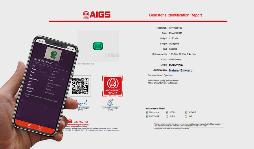 AIGS Adds 360-Degree Video Gem View to Reports - InstoreMag com