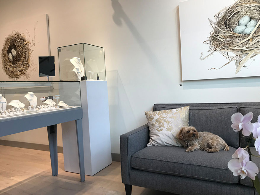 Store mascot Harry Winston relaxes on the sofa near the entrance of Art + Soul