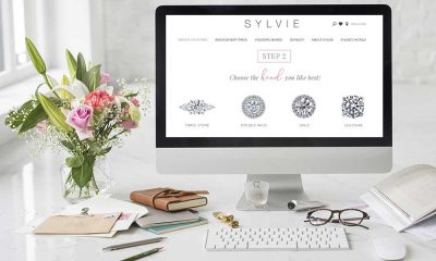SYLVIE Style Bar on desktop