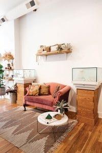 Lane & Kate interior