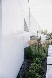 Lightbox Lab-Grown Diamond Plant