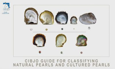 CIBJO Pearl Commission  Released  Guide for Classifying Natural Pearls and Cultured Pearls