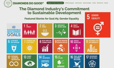 DDG and RJC development goals