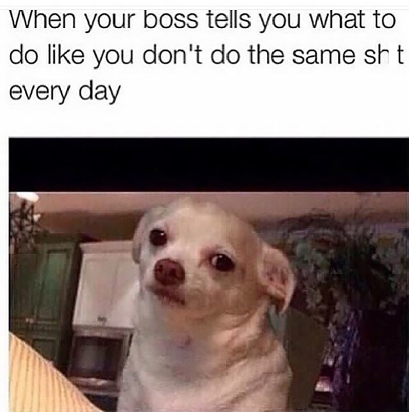 49 Boss Memes That Everyone in Retail Can Relate To